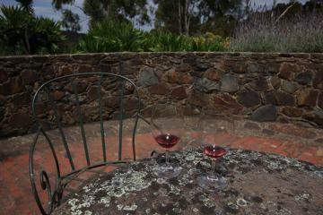 Pinot Noir – to jeden z australijskich smaków, który zapamiętam na długo