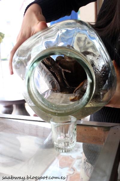 5 Miejscowa wódka z małymi żółwikami... dla odważnych?
