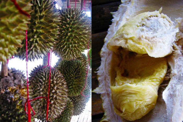 Indonezja – wszystkimi zmysłami