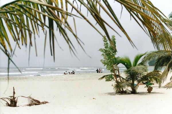 W Gambii przybywa turystów, którzy odwiedzają ten kraj dla pięknych, piaszczystych plaż (wpływy z turystyki stanowią drugie główne źródło dochodu). Najlepszą porą na wyjazd do tego kraju jest okres między listopadem i majem.