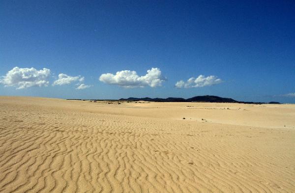 Parque Natura El Jable, Fuerteventura