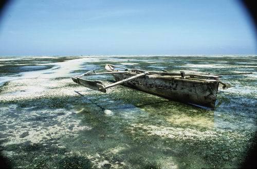 Tradycyjna łódź rybacka na Zanzibarze