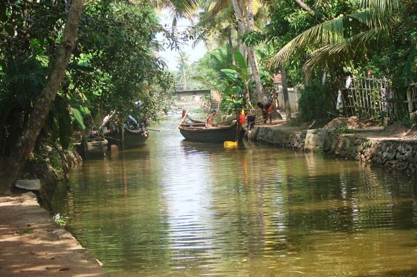 W rozlewiskach Kerali życie toczy się na wodzie